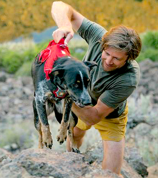RUFFWEAR HARNESSES: comfortable, all day harnesses for training and lifting