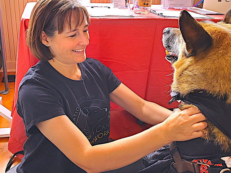 MASSAGE AND ACUPRESSURE SPECIALIST FOR DOGS OF ALL AGES