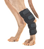 BACK ON TRACK THERAPEUTIC WRAPS: back leg hock wraps for dogs