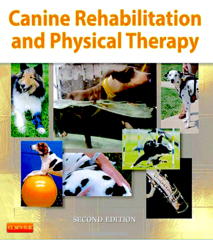 CANINE REHABILITATION AND PHYSICAL THERAPY: bridging the gap between human PT and veterinary medicine-2020