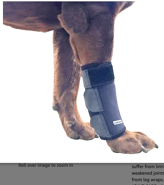 LABRA DOG FRONT LEG BRACE: canine wrist support to help heal and improve comfort