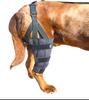 LABRA KNEE BRACE WITH METAL SPLINTS: rigid and hinged splint support system to support your dog's knee
