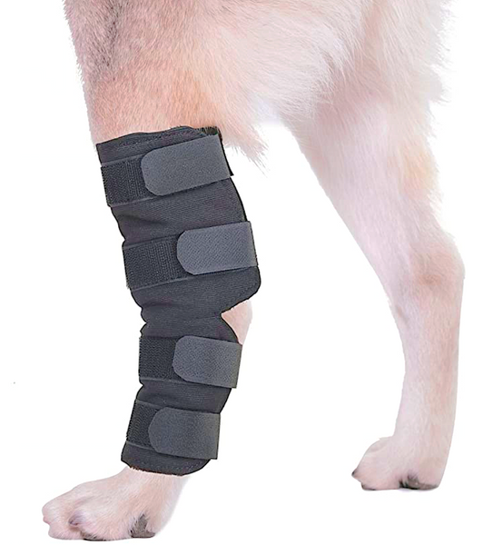 AGON DOG HOCK/ANKLE BRACE: for protection and support of the rear leg ankle joint