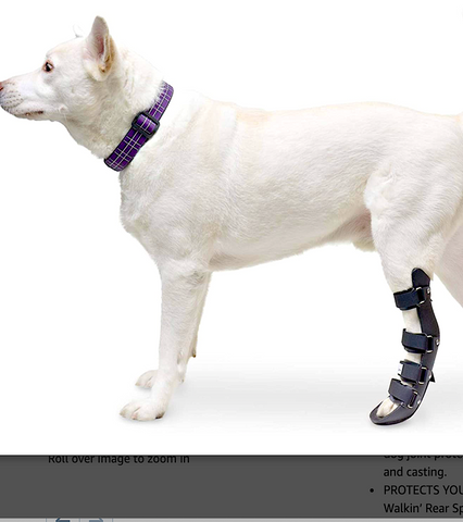 WALKIN' REAR LEG SPLINT: helps brace lower back leg and foot