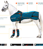 BEMER EQUINE: to improve circulation and support the body's natural self-regulating processes