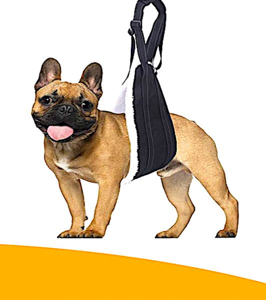 BOLUX DOG SLING: adjustable rear leg and hip support for injured or painful dogs