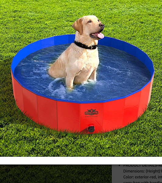 FOLDABLE PVC PET POOL