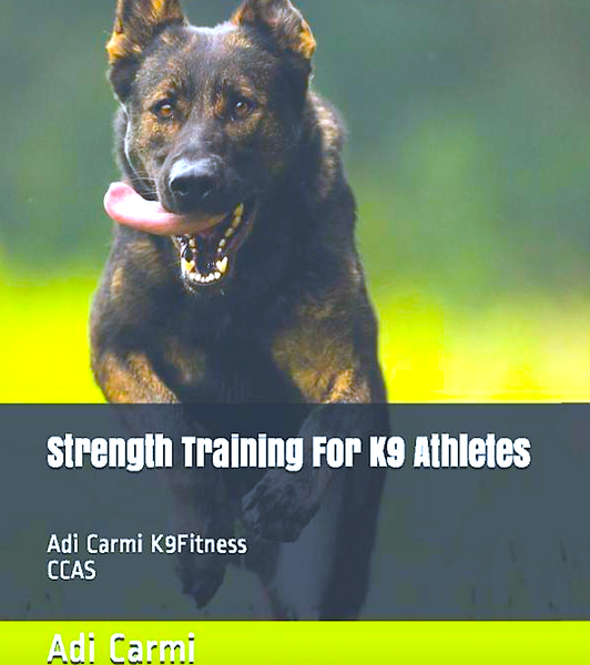 STRENGTH TRAIN FOR K9 ATHLETES: 2020