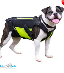 WALKIN' VERTEBRAVE: for back support system for your dog's back pain and disc disease