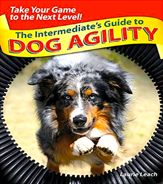 THE INTERMEDIATE'S GUIDE TO DOG AGILITY: everything you need to know