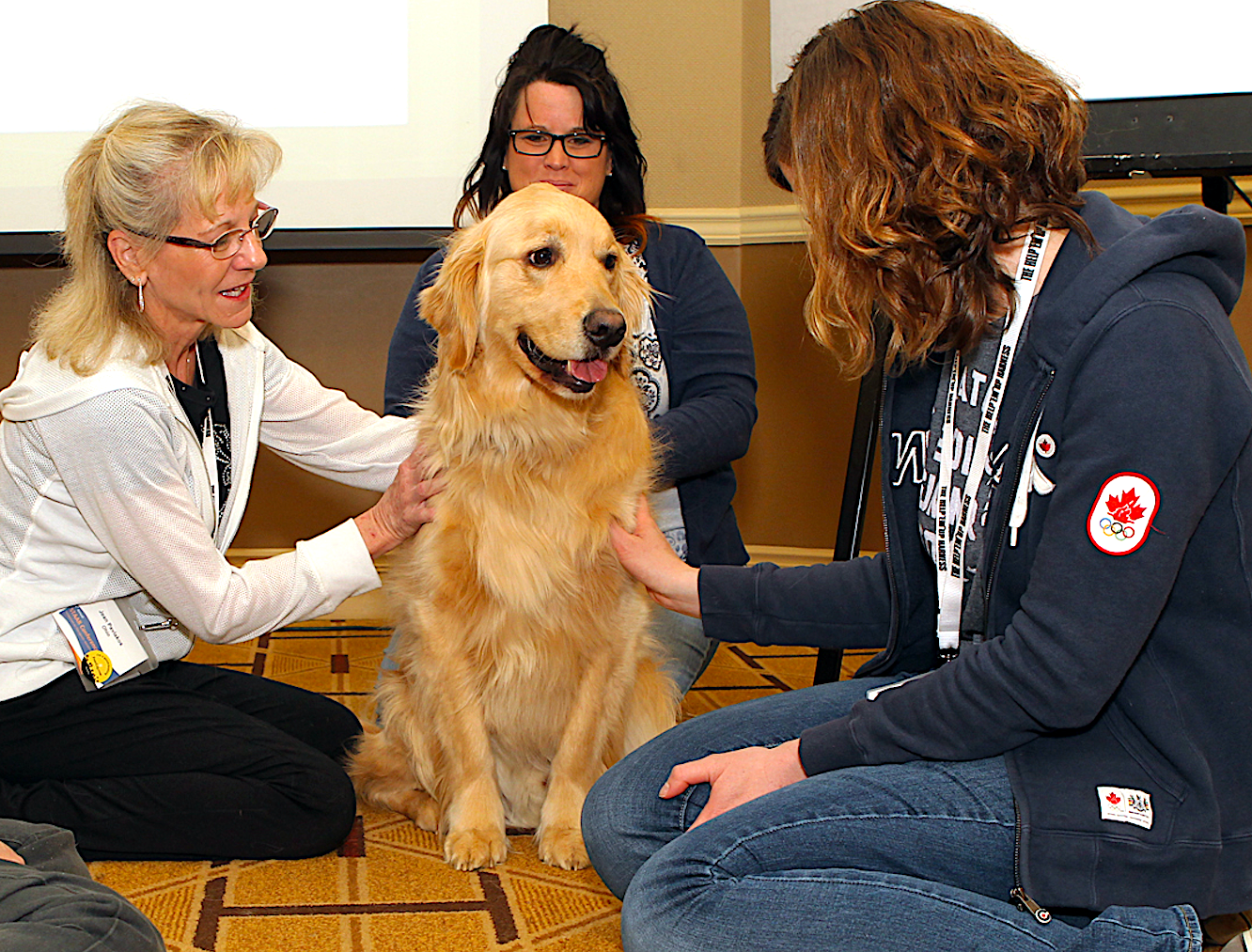PHYSICAL THERAPIST - EXPERT IN REHAB OF ATHLETES, SENIOR PETS, & MORE