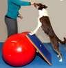 FITPAWS PEANUT STABILITY BALL