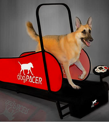DOGPACER: the best dog treadmill on the market!