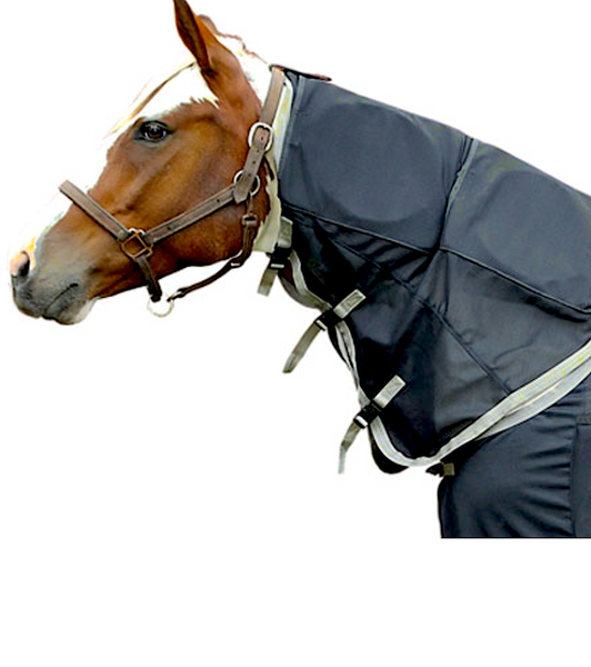 RESPOND SYSTEMS EQUINE BIO-PULSE: PEMF blankets, pads, and wraps for horses
