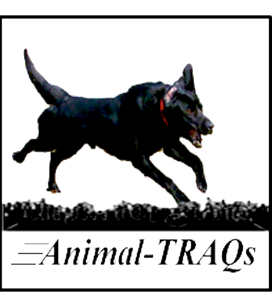 ANIMAL-TRAQs: motion analysis software license