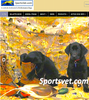 SPORTS VET: website dedicated to athletic and working dogs