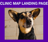 CLINIC MAP LANDING PAGE: rotating banner animation ad