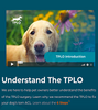 TPLO INFO: Helping pet owners understand TPLO surgery