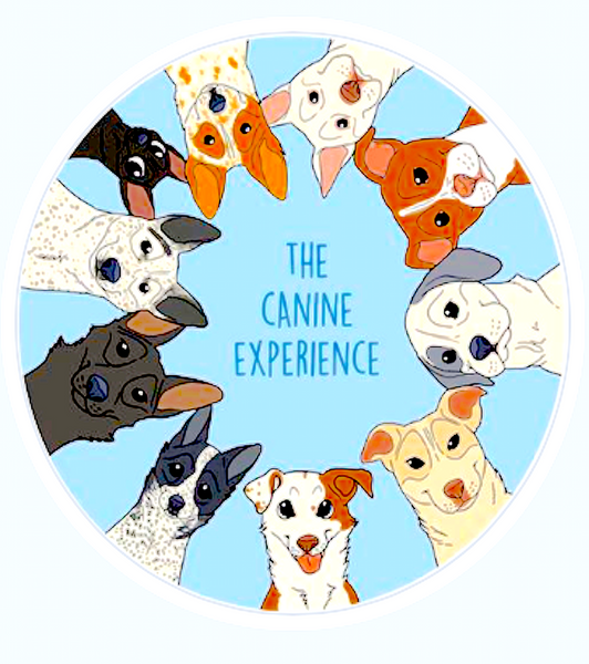 THE CANINE EXPERIENCE: dog trainers with awesome dogs and adventures