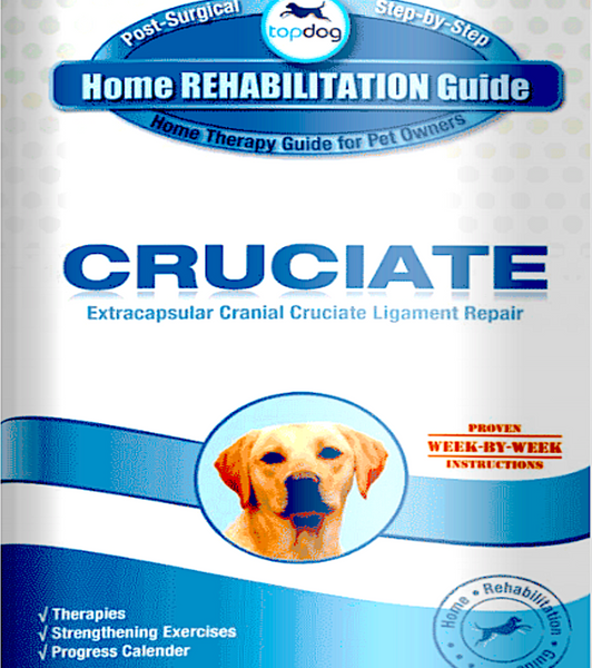 TOPDOG HEALTH HOME REHAB GUIDES