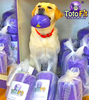 TOTO FIT: canine balance and core-work products