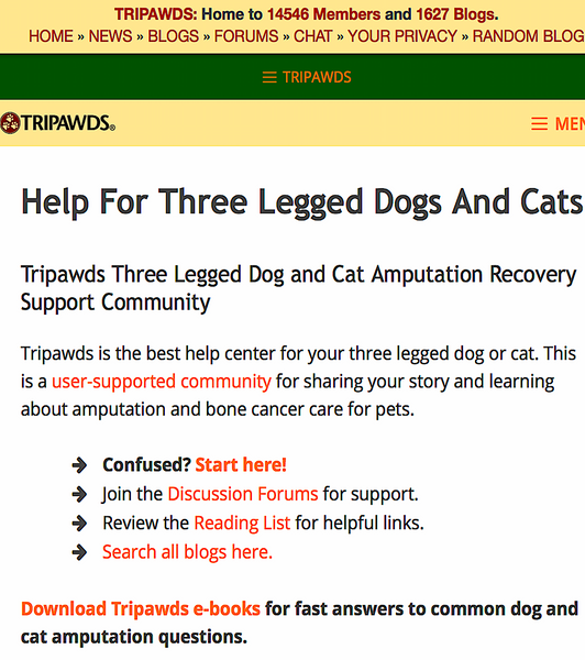 TRIPAWDS: resource for parents of 3-legged dogs and cats