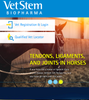 VETSTEM BIOPHARMA: leading the way in regenerative veterinary medicine