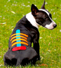 VETKIN KINESIOLOGY TAPE: specific for veterinary use