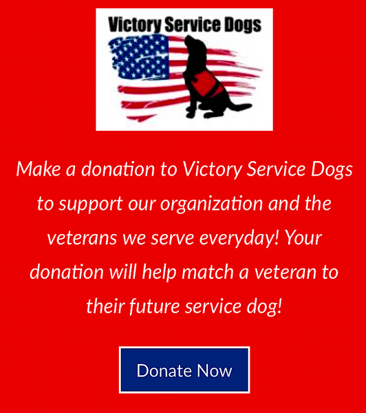 VICTORY SERVICE DOGS: helping veterans with loving service companions