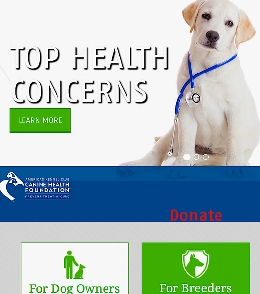 CANINE HEALTH FOUNDATION: prevent, treat, cure