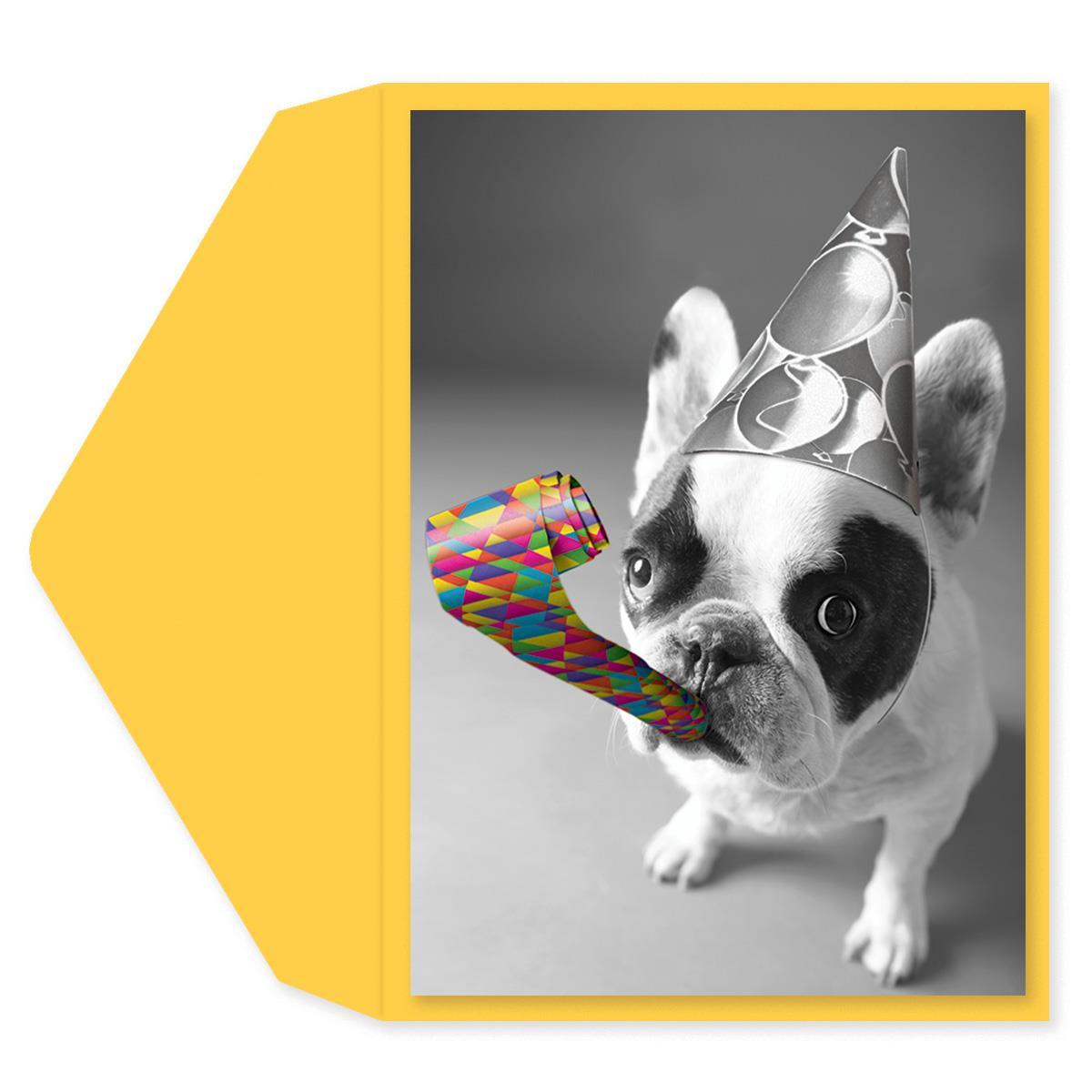 Party Bulldog Birthday Card