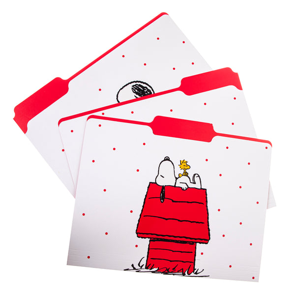 Peanuts™ File Folder Set File Folder Set