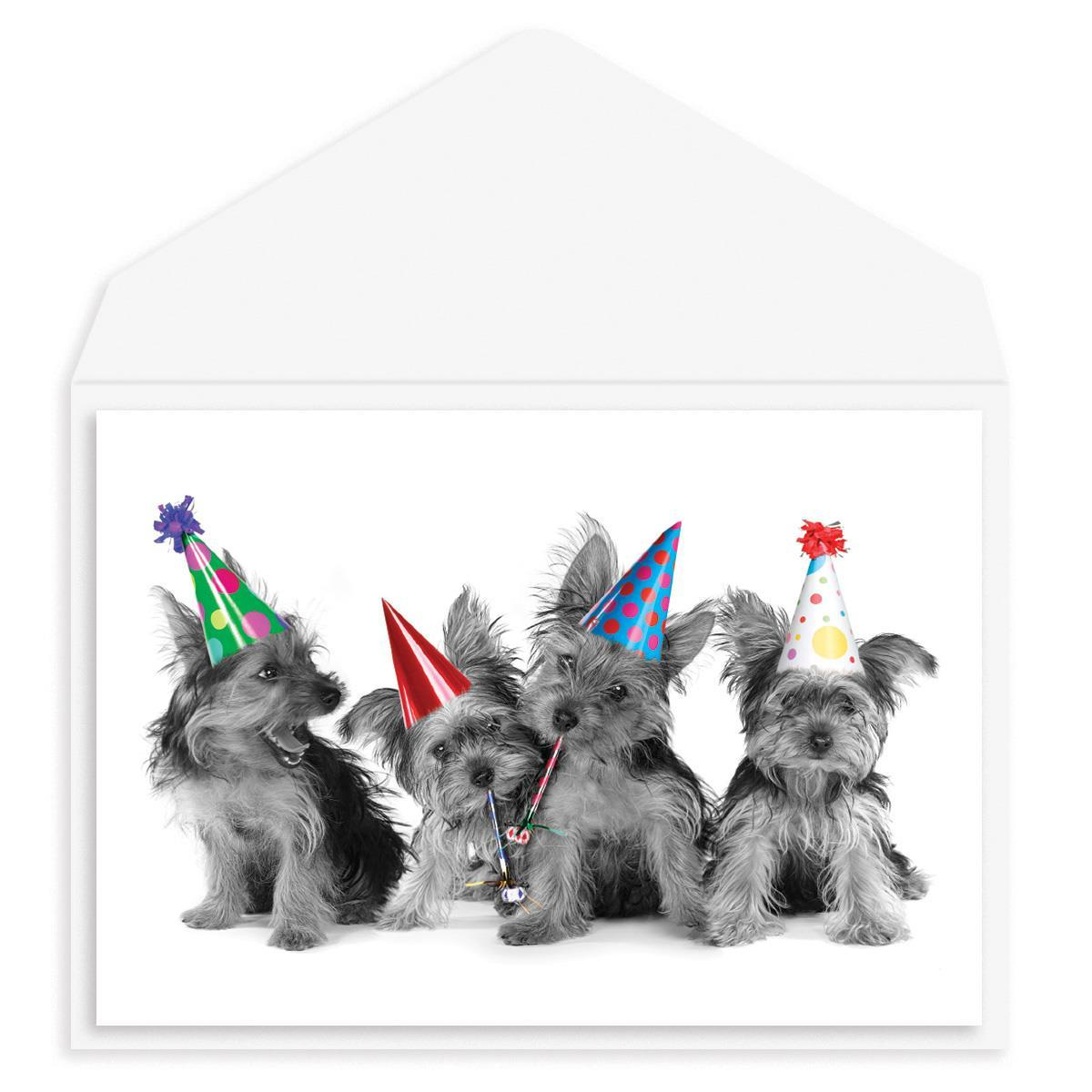 Puppy Party Birthday Card