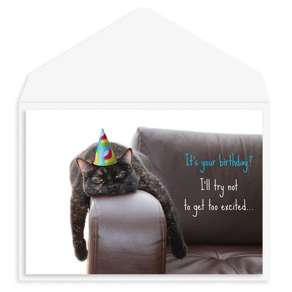 Bored Cat Birthday Card