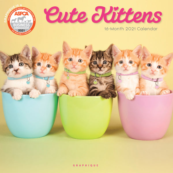 Cute Kittens Wall Calendar