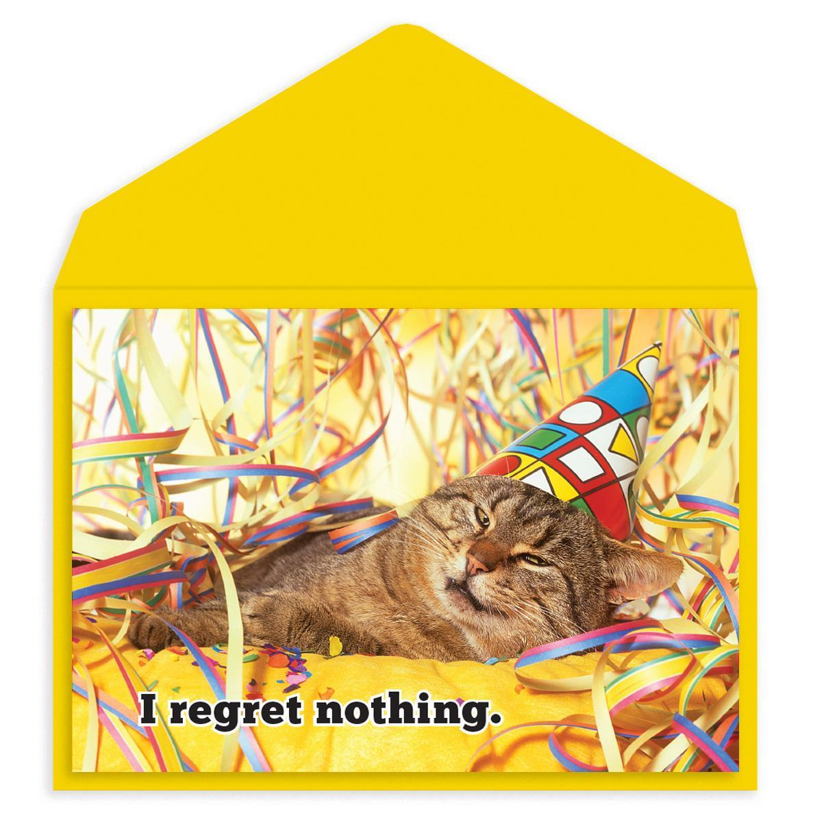 No regrets party cat Birthday Card