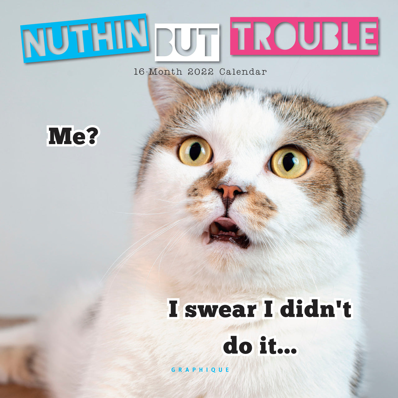 Nuthin' But Trouble 7x7 Mini Calendar