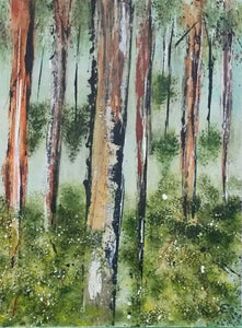 Eucalypt Dreams 9 x 12 inches