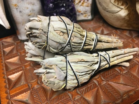 TCA - White Sage Smudge Bundle - 4""