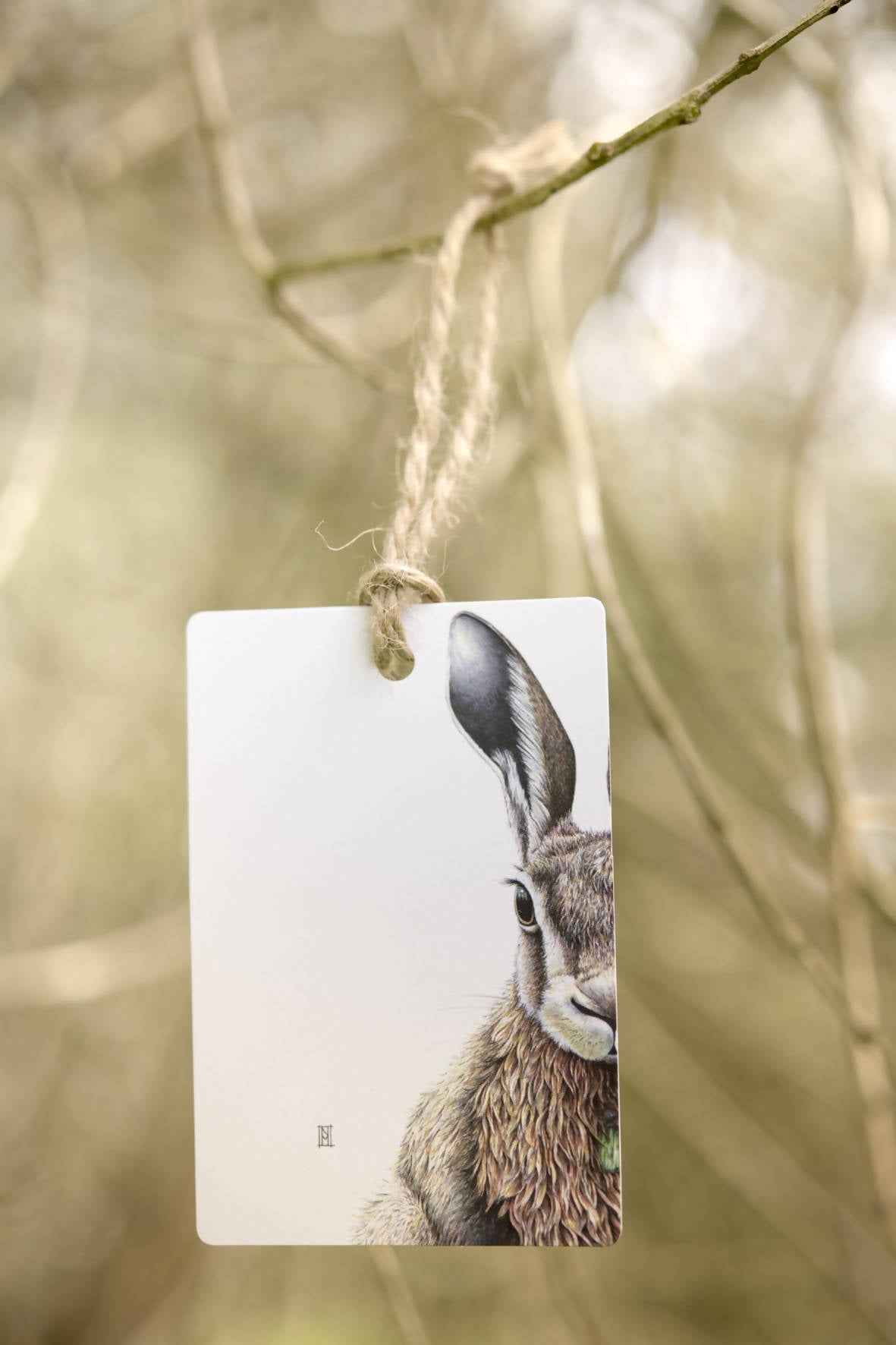 Animal Gift Tag Set