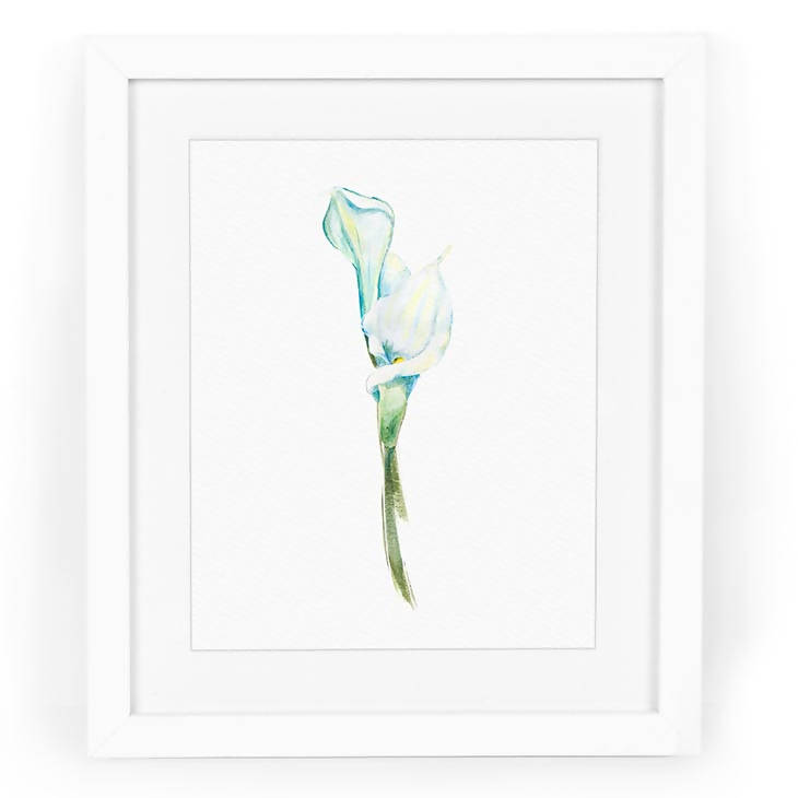 Calla Lilies Watercolor Art Print