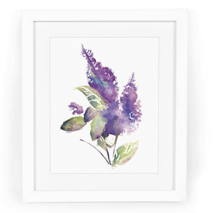 Delphinium Watercolor Art Print