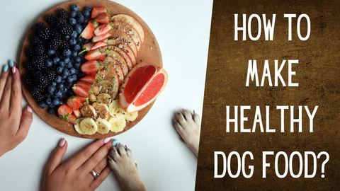 how to make healthy dog food at home
