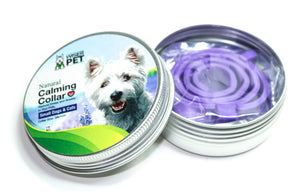 Dog Calming Collar (Small) - Natural Essential Oils