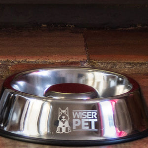 Wiser Pet Slow Feed Dog Bowl