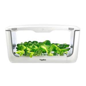 VegeBox Home - Indoor Hydroponic Garden Greens
