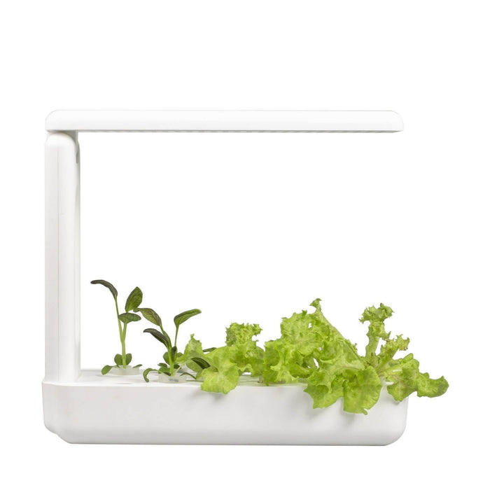 VegeBox Kitchen - Indoor Hydroponic Garden