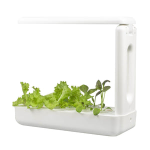 VegeBox Kitchen - Indoor Hydroponic Garden Back