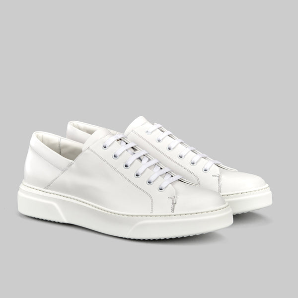 Spectre low top sneaker