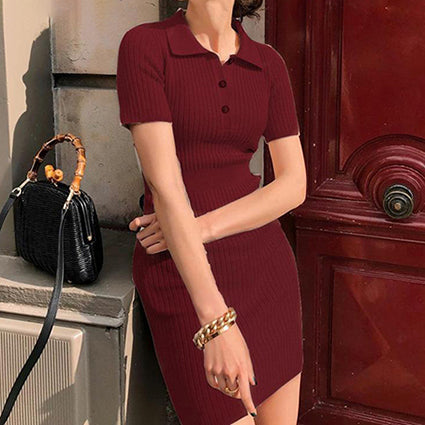 Sweater Dress Knitted Dress Slim Solid Polo Collar Mini Dress Bodycon Sexy Dress Vestidos